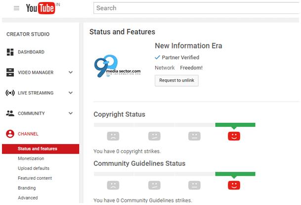 make money on youtube without adsense