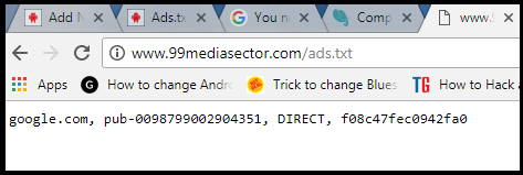 ad.txt file format after adding ad.txt file