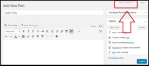 wordpress screen option