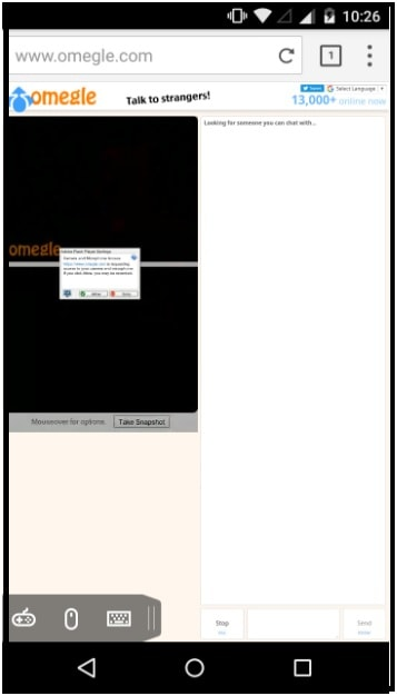Omegle video chat screen
