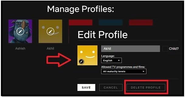Delete A Netflix Profile