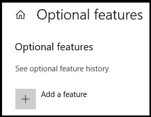 optional feature